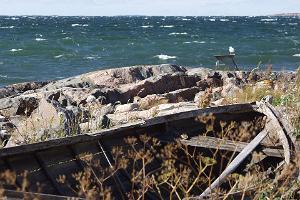 Пляжная идиллия на острове Найссаар