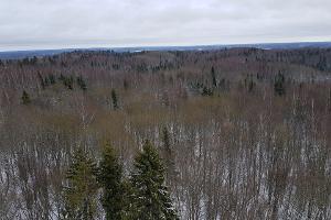 Talvine loodusmatk Kekkose matkarajal.