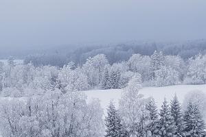 Talvine loodusmatk Kekkose matkarajal. Ka suvel on ilus ja põnev!
