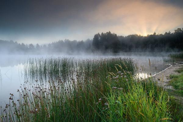 Kurtna järvestiku järv hommikuudus