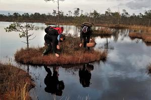 Alutaguse nationalpark och Iisaku naturcenter