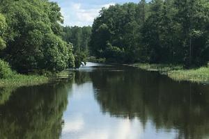 Õhne jõgi