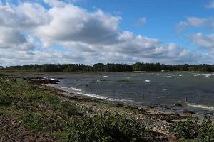 Morgendliche Vogelbeobachtung auf der Halbinsel Paljassaare bei Tallinn