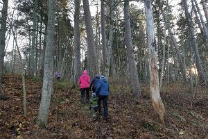Talveretk: seikluslik ellujäämisretk algajatele