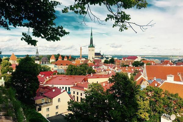 Ringreis Eestis rendiautoga