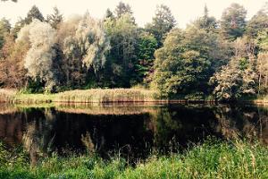 Self-drive tour of Estonia