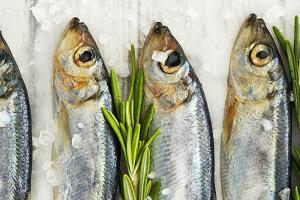 Sessel Salongi äkise ja Läänemere kala degustatsioon