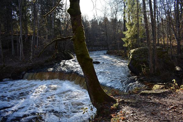 Visit Lahemaa retk: Nõmmeveski - Lahemaa rahvuspargi Häll