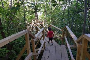 Ida-Virumaa looduspärlid ja Valaste juga