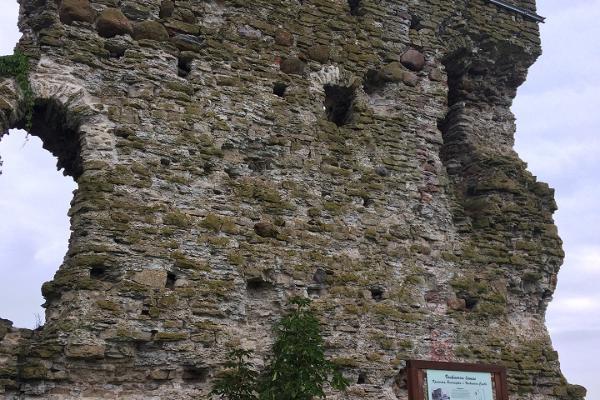 Vasknarva Ordulinnuse varemed
