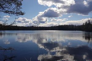 Kurtna järvestikus üks järvedest, Mustjärv