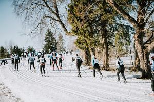 Tartu Marathon