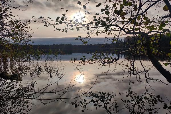 Matk ümber Saare järve