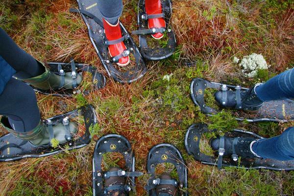 Snowshoe hike in Endla bog