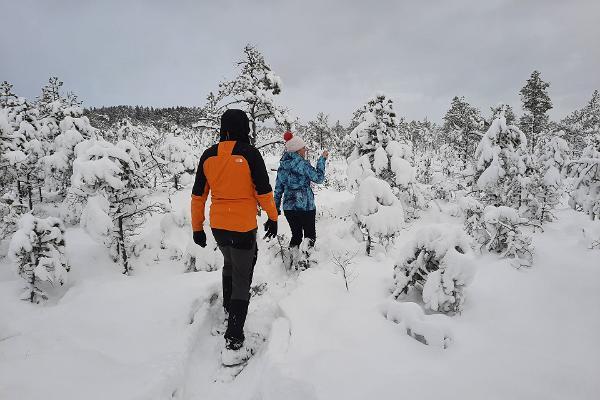 Nature Tours Estonia räätsamatk Peipsiveere looduskaitseala rabasaartele