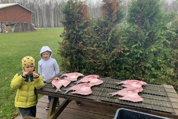 Fische, die auf den Räucherofen warten, und Kinder