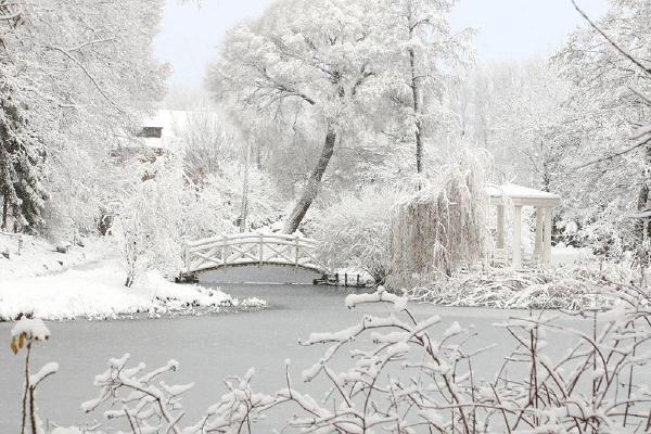 Jalutuskäik ajaloolises Tartus: Tartu Ülikooli Botaanikaaed lumisel talvel
