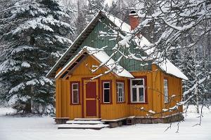 Nedsaja Forest Hut