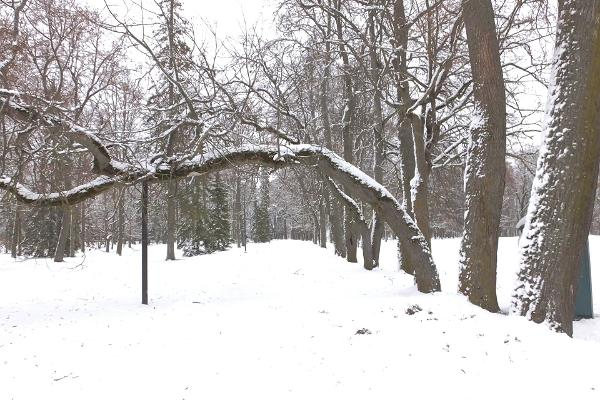 Luunjan kartanopuisto