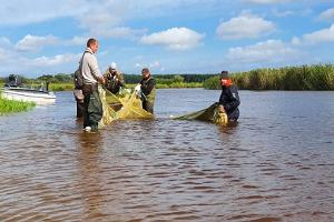 Placing fishing nets