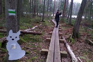 Kakerdaja bog hiking trail