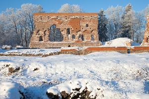 Развалины Вильяндиской орденской крепости