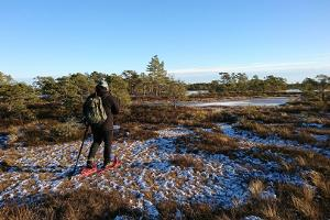 Seikle Vabaks (Freedom of Adventure) – snowshoe hike in Soomaa National Park