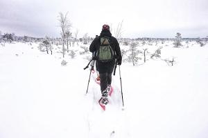 "Приключенческий поход на болотоступах по болоту Толкузе от ""Seikle Vabaks"""