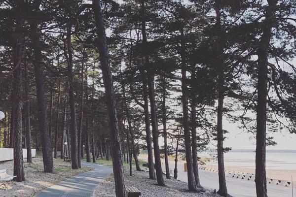 Võsu Beach, cycle and pedestrian track