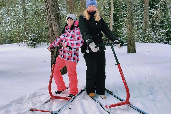 Verevi motelli tõukekelgu laenutus, rõõmsad kelgutajad lumises metsas