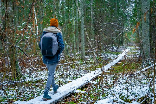 Туристическая тропа Вылинги
