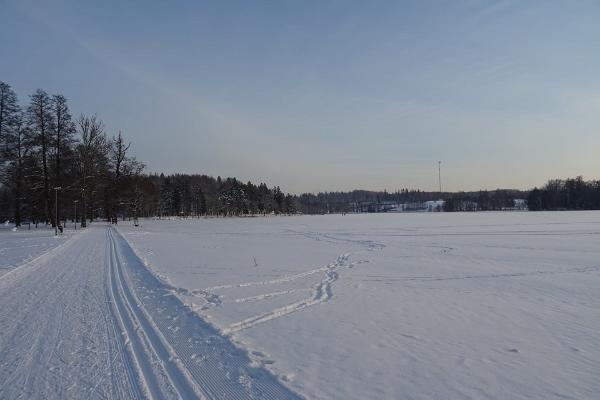 Talvine Pühajärve park