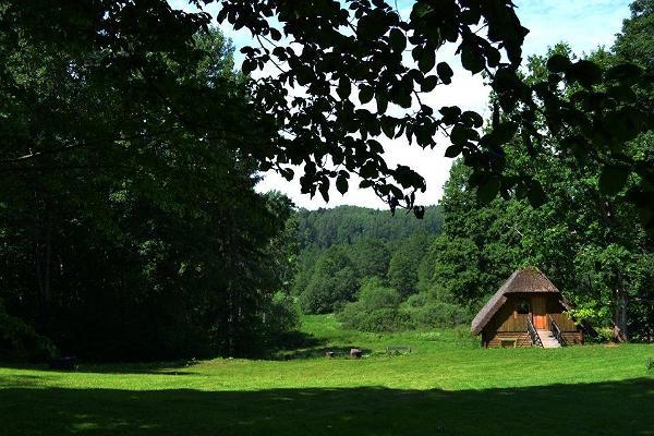 Lasita Puhkemaja väike majake puude vahel