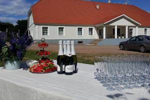Lühikeste meeste kõrtsi pudelik vastuvõtulaud, vahuvein ja maasikad
