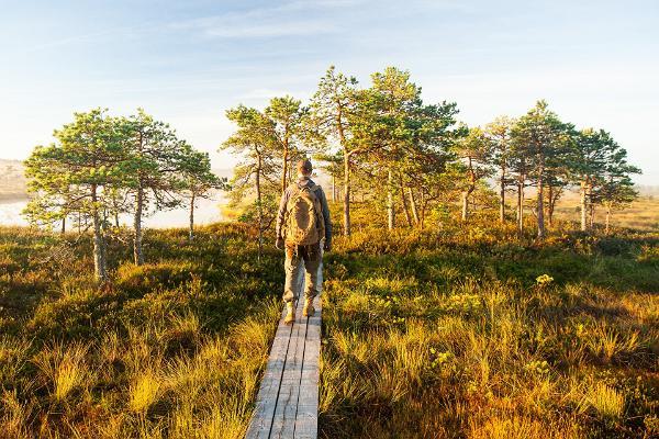 Ringikujulised matkarajad Põhja-Eestis