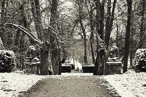Парк мызы Луке и фигуры львов зимой