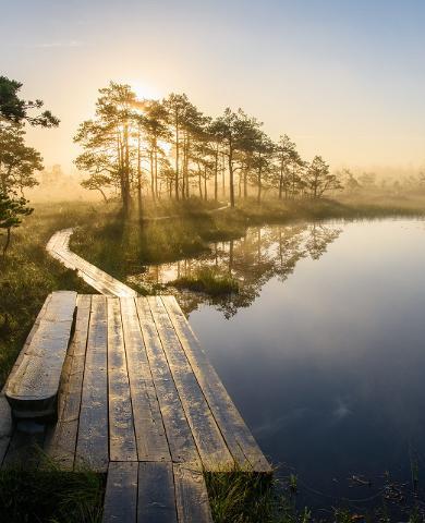 Ringikujulised matkarajad Lääne-Eestis