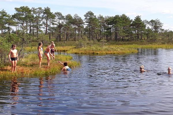 Swimming in the bog in Estonia
