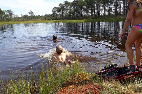 Swimming in the bog