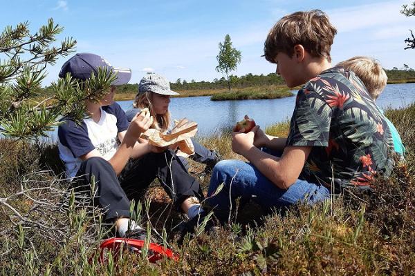 Lunchbrake in bog