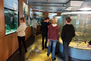 Unterrichtsprogramm im Seemuseum für Jugendliche