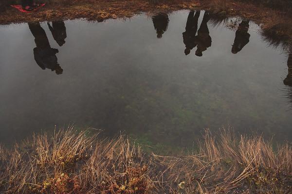 Поездка из Таллинна: поход по болоту Кынну-Суурсоо и посещение эстонской бани