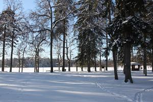 Dalai Laman vierailun muistomerkki talvisessa Pühajärven puistossa