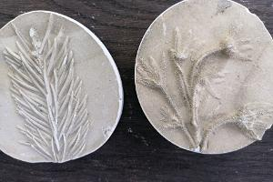 Fossiilien valmistuspaja Soomaalla