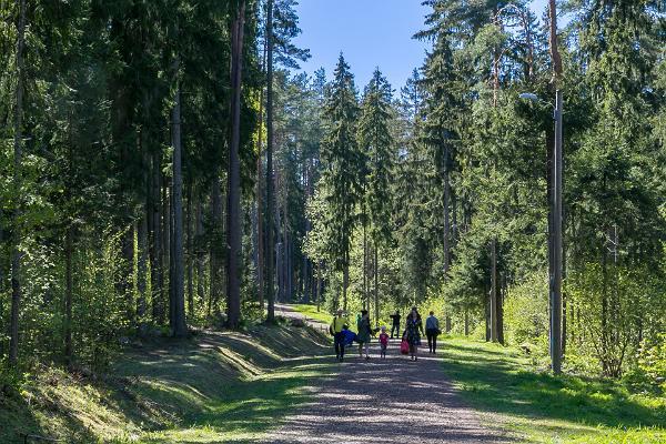 Vooremäe Health Sports Centre health trails in summer