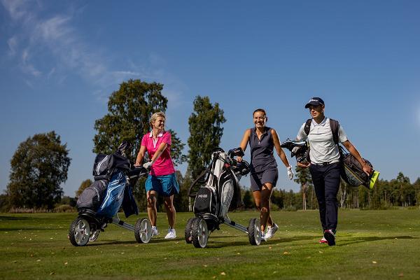 Посетители Rae Golf
