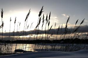 Sataman majapaikka kutsuu tutustumaan Kihnun saareen talvella!