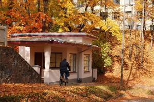 ULA bar, autumn, colours
