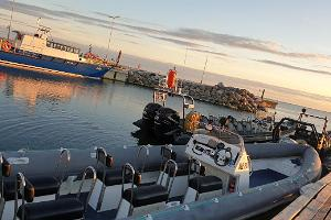 Сафари на RIB-катере продолжительностью 1 час и Капитанский домик / баня на корабле в порту Рохунеэме