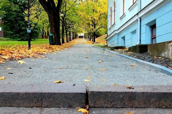 Toomemäe parki viivad trepid